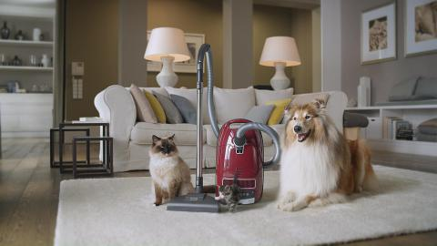 Miele - Cat and Dog